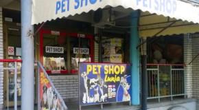 "Pet Shop hotel YU Retenzija Stari Merkator ""LUNJA"""