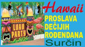"""Proslava dečijih rođendana Surčin Ledine Bežanija igraonica """"Hawaii"""""""
