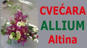 """Cvećara i dostava cveća Altina Galenika Zemun polje Batajnica """"ALLIUM"""""""