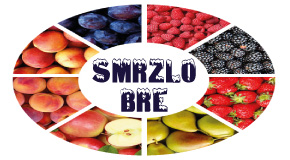 "Smrznuto voće povrće pecivo Bežanijska kosa Novi Beograd ""SMRZLO BRE"""
