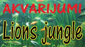 """Uzgoj i prodaja akvarijumskih ribica papagaja Arena Novi Beograd Zemun """"Lions jungle"""""""